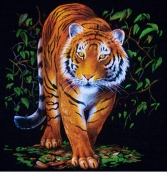 SALE! Beautiful Tiger in the Brush Plus Size & Supersize Printed T-Shirts S M L XL 1x 2x 3x 4x 5x 6x 7x 8x (Most Colors)