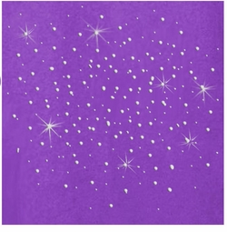 SOLD OUT! Sale! Purple Rhinestud Scatter Plus Size & Supersize T-Shirt 5x