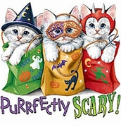 SOLD OUT! FINAL SALE! Purrfectly Scary Cat Halloween Kitty's Plus Size T-Shirts 1xl 2xl