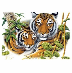 SALE! Two Tigers Plus Size & Supersize T-Shirts S M L XL 2xl 3xl 4x 5x 6x 7x 8x (Lights Only)