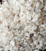 Dammar Gum Resin - White(Shorea wiesneri) - Indonesia