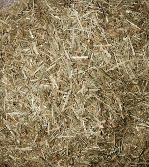 Lemongrass(Cymbopogon citrates) (Cut/Powder)