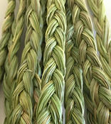 Mini Mama's Sweetgrass-10""