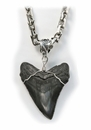 Authentic Megalodon Fossil Shark Tooth Pendant Necklace
