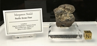 Manganese Nodule Well-Defined - New!