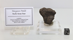 Manganese Nodule Clarion-Clipperton Fracture Zone NEW