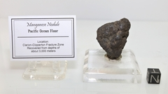 Authentic Manganese Nodule Clarion-Clipperton Fracture Zone NEW