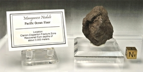 Authentic Manganese Nodule Clarion-Clipperton Fracture Zone