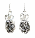 Meteorite Jewelry Earrings Campo del Cielo