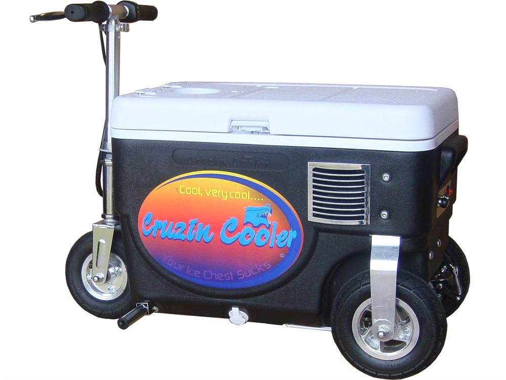 Cruzin Cooler Scooter 500 Watt Motor 24 Volt Sla Battery