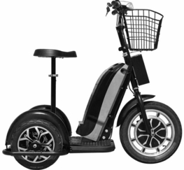 mototec electric trike 800 watt 48 volt battery stand or sit Lithium Ion Battery Package Stickers new item free shipping mototec stand or sit electric trike 800 watt 48 volt battery capacity