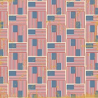 Americana: Home of the Brave 12 x 12 Paper