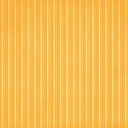 Basics: Spring Into Summer: Orange Stripes 12 x 12 Paper