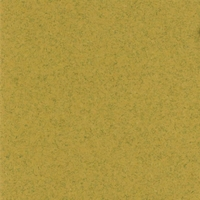 Beach Classic 12 X 12 Bazzill Cardstock (Brown)