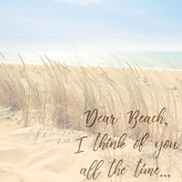 Beach Sayings: Dear Beach 12 x 12 Paper