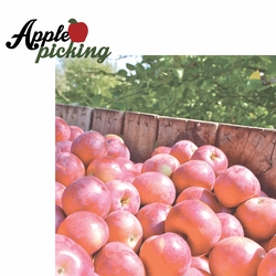 2SYT Berry Picking: Apple Picking 2 Piece Laser Die Cut Kit