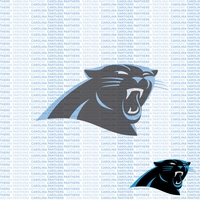 Fanatic: Carolina Panthers 12 x 12 Paper