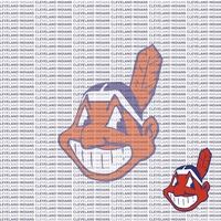 Fanatic: Cleveland Indians 12 x 12 Paper