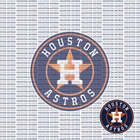 Fanatic: Houston Astros 12 x 12 Paper