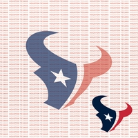 Fanatic: Houston Texans 12 x 12 Paper