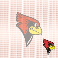 Fanatic: Illinois State University 12 x 12 Paper