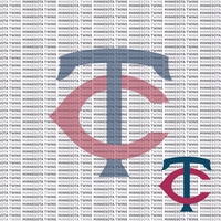 Fanatic: Minnesota Twins 12 x 12 Paper