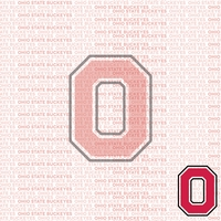 Fanatic: Ohio State 12 x 12 Paper