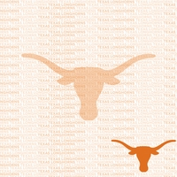 Fanatic: Texas 12 x 12 Paper