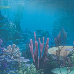 Finding Dory: Have You Seen Her 12 x 12 Paper