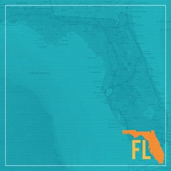 Florida Travels: FL Map 12 x 12 Paper