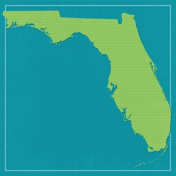 Florida Travels: FL State 12 x 12 Paper