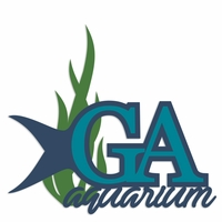 Georgia: Aquarium Laser Die Cut