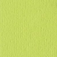 Green Tea Orange Peel 12 X 12 Bazzill Cardstock (Green)