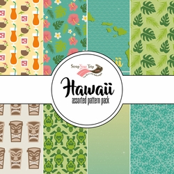 Hawaii Assorted 12 x 12 Paper Pack