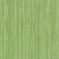 Lily Pond Grasscloth 12 X 12 Bazzill Cardstock (Green)