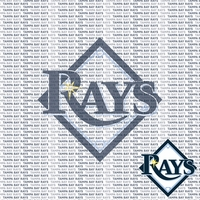 MLB Fanatic: Tampa Bay Rays 12 x 12 Paper