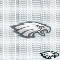 NFL Fanatic: Philidelphia Eagles 12 x 12 Paper