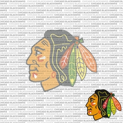 NHL Fanatic: Chicago Blackhawks 12 x 12 Paper