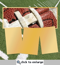 Panorama: Football Frame Kit