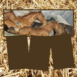 Panorama: Running Horses Frame Kit