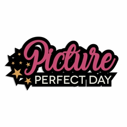 Photo Bomb: Picture Perfect Laser Die Cut