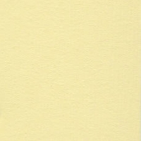 Pollen Grasscloth 12 X 12 Bazzill Cardstock (Orange)