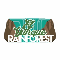 Puerto Rico: Rainforest Laser Die Cut