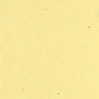 Sawdust Classic 12 X 12 Bazzill Cardstock (Brown)