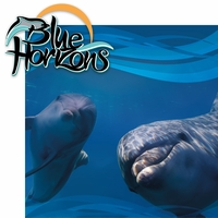 Sea The World: Blue Horizons 2 Piece Laser Die Cut Kit