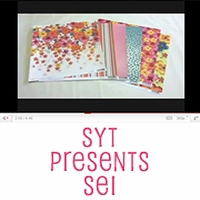 <font color=blue><b>SYT Presents SEI</b></font>