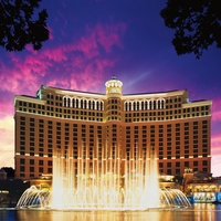 Vegas: Bellagio 12 x 12 Paper
