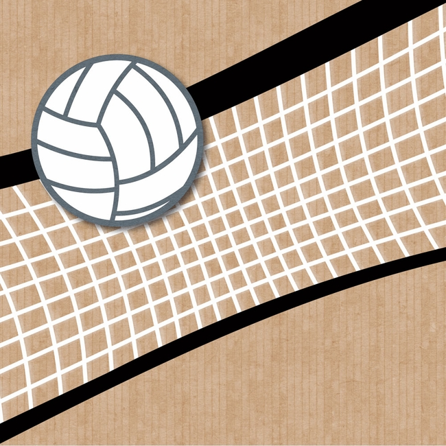 website for essays volleyball
