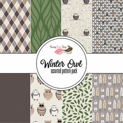 Winter Owl Assorted 12 x 12 Paper Pack