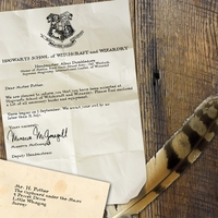 Wizarding World: Acceptance Letter Custom 12 x 12 Paper